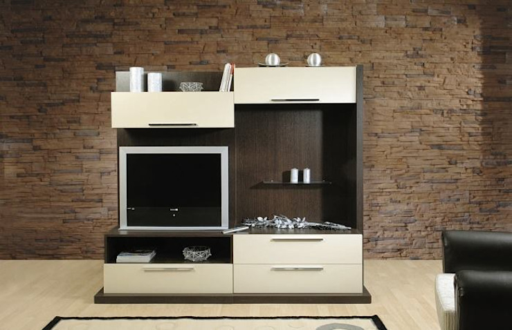 MUNGAN INTERIOR DESIGN Living roomTV stands & cabinets