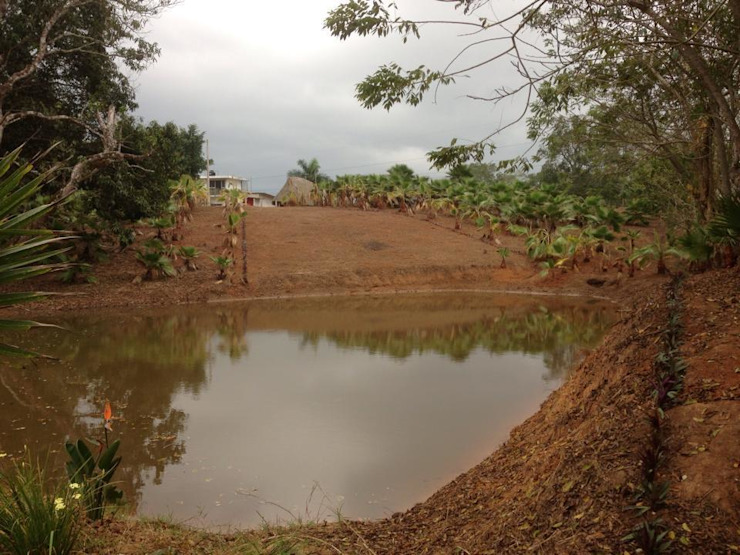 Jardin en Finca Mexicana, Veracruz Jardines de estilo rural de Paisajismo Digital Rural