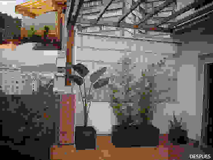 Terraza en Atico en Barcelona Jardines de estilo tropical de Paisajismo Digital Tropical