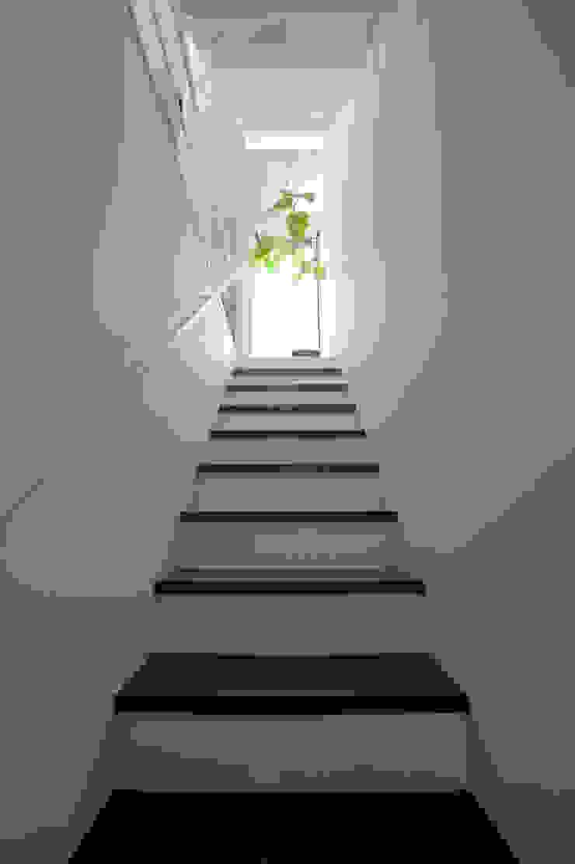 階段(1F~2F) モダンスタイルの 玄関&廊下&階段 の 余田正徳/株式会社YODAアーキテクツ モダン