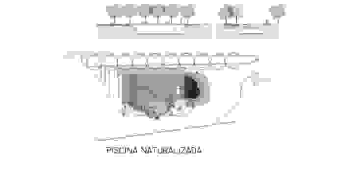 Naturalized pool plan FG ARQUITECTES