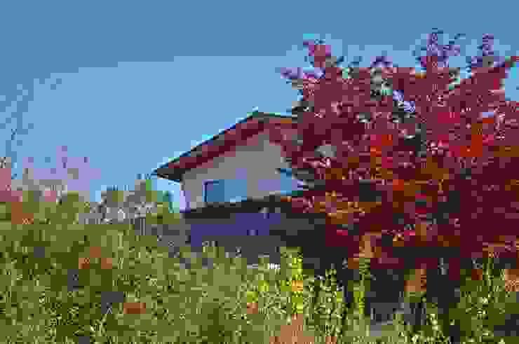西側の既存植栽 ラスティックな 庭 の DEMU建築設計事務所 ラスティック