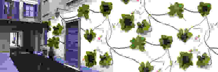 Muurbloem Design Studio_Collection Flowers + Leaves_Clover: modern  door Muurbloem Design Studio, Modern