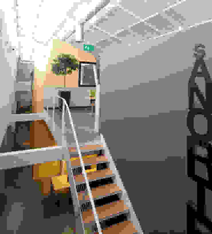 OTIS Istanbul Headquarters Modern Koridor, Hol & Merdivenler SANALarc Modern