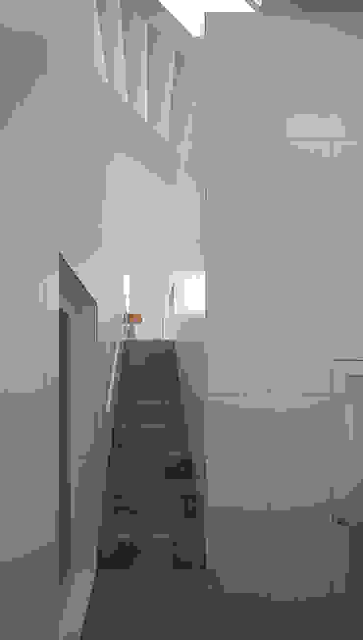 内観-階段からダイニングを見る モダンスタイルの 玄関&廊下&階段 の アソトシヒロデザインオフィス/Toshihiro ASO Design Office モダン