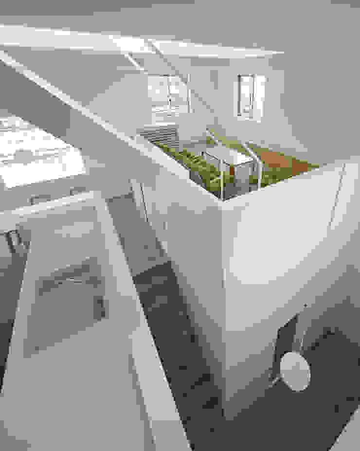 内観-キッチンから全体を見る モダンデザインの リビング の アソトシヒロデザインオフィス/Toshihiro ASO Design Office モダン