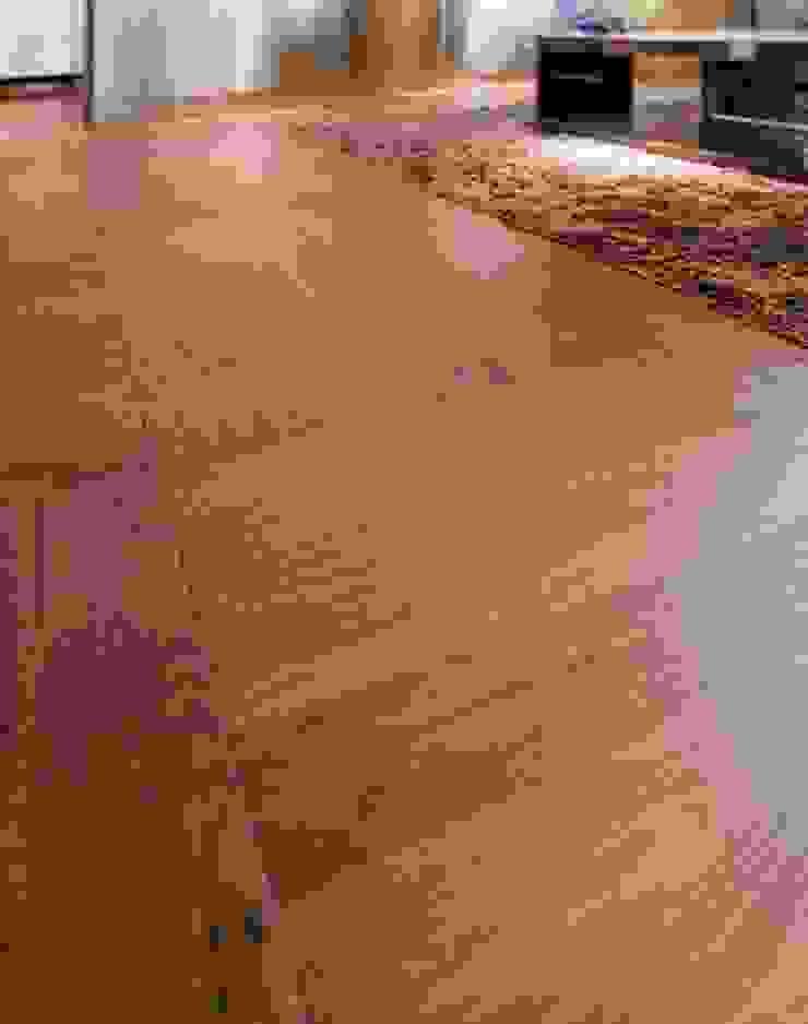 TRIO PARQUET – STP Wood+ Walnut American Classic: modern tarz , Modern