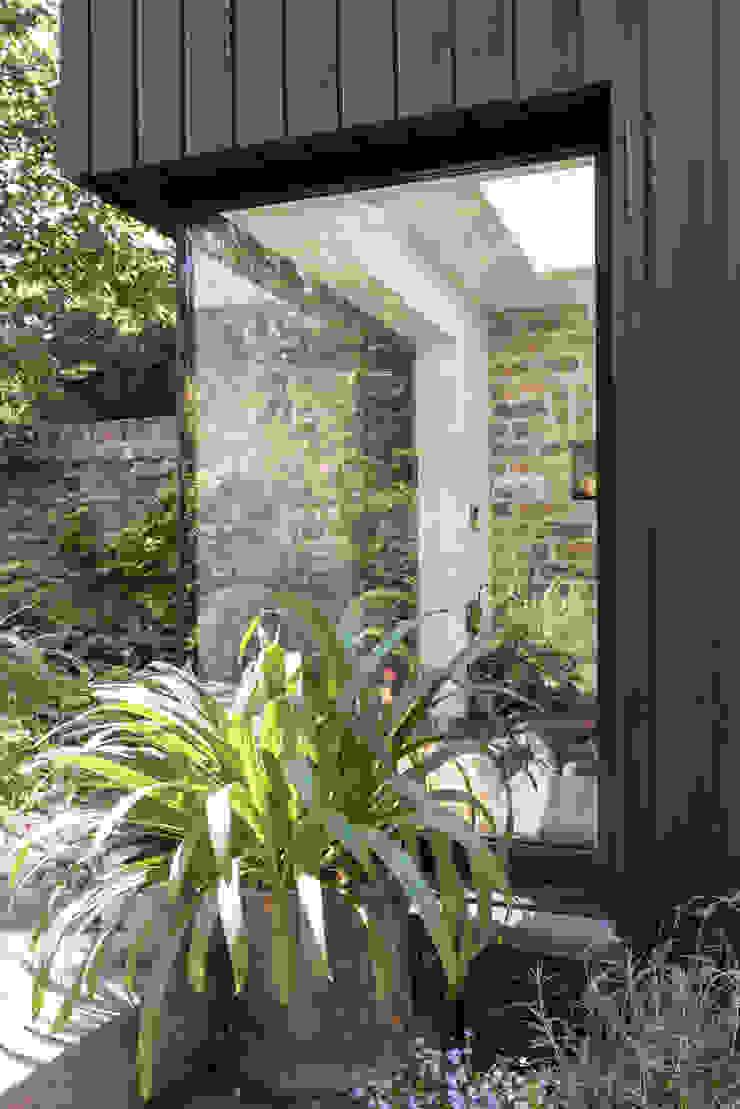 Cecilia Road Minimalist windows & doors by MW Architects Minimalist