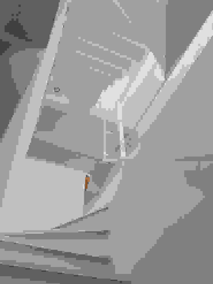 階段室 モダンスタイルの 玄関&廊下&階段 の 株式会社小島真知建築設計事務所 / Masatomo Kojima Architects モダン