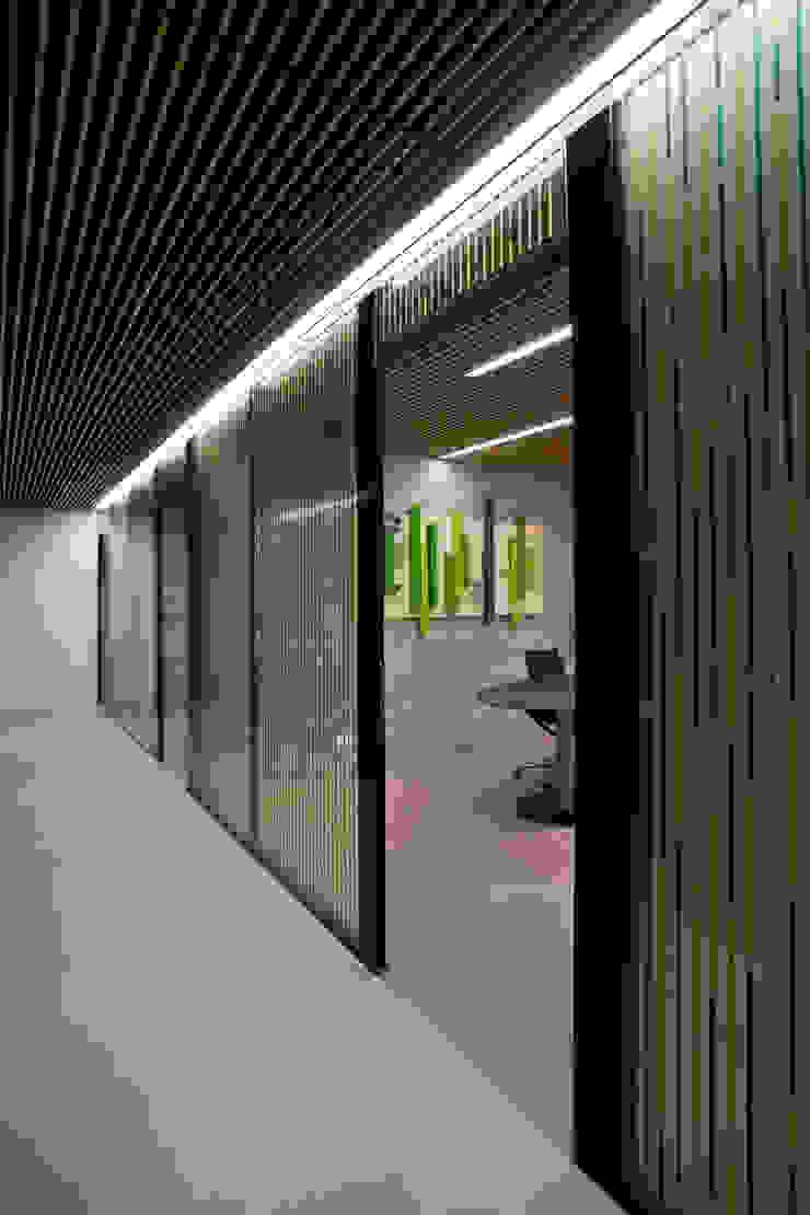 Vouten & Lichtdeckenbeleuchtung Moderne Bürogebäude von KANDEM Leuchten GmbH Modern