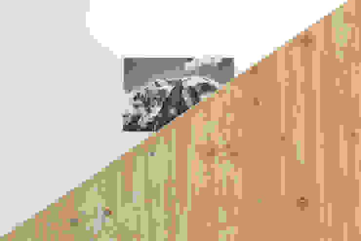 Treppendetail Moderner Flur, Diele & Treppenhaus von peter glöckner architektur Modern