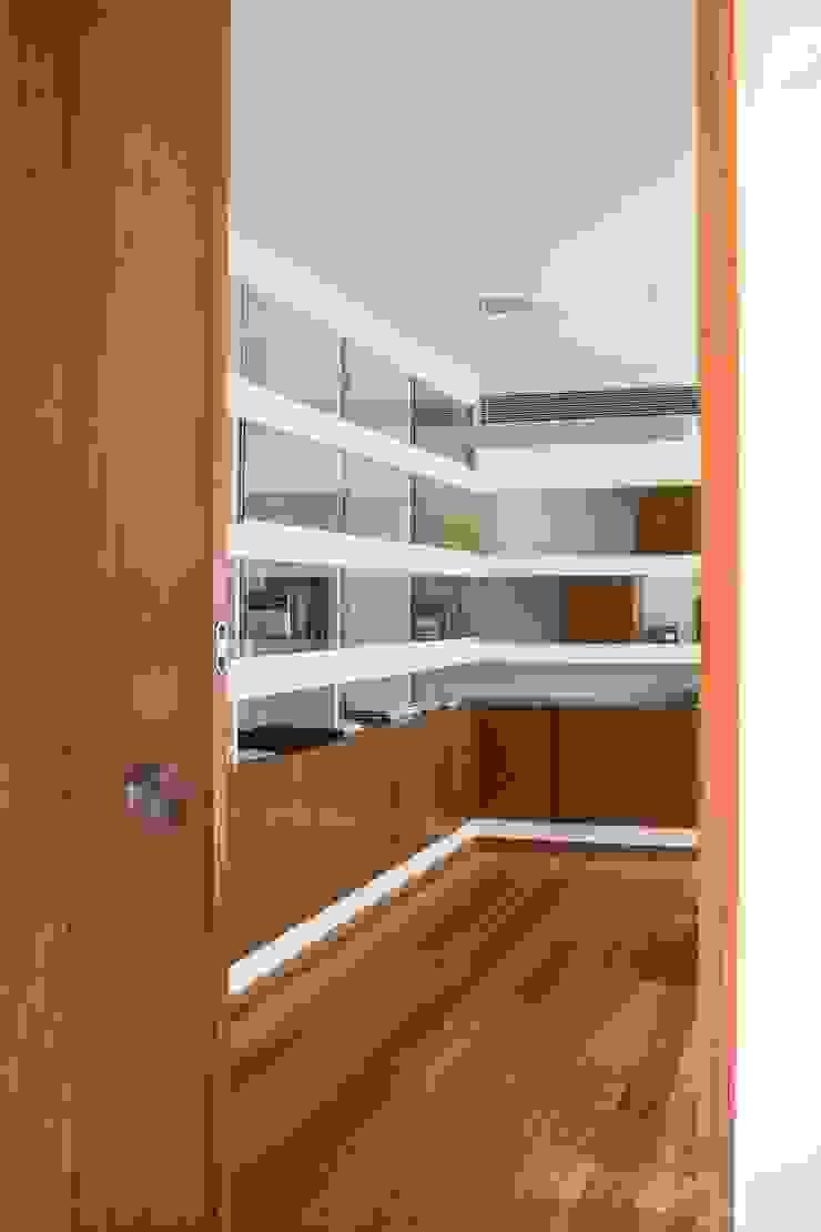 Casa JD Janelas e portas modernas por Atelier Lopes da Costa Moderno
