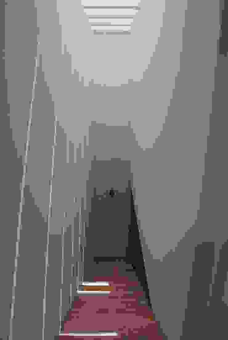 Bajando el sol Pasillos, vestíbulos y escaleras de estilo moderno de saz arquitectos Moderno