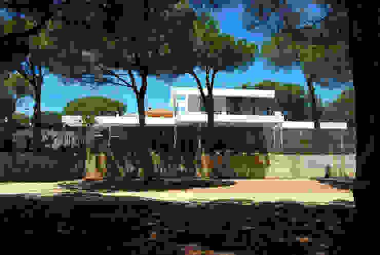 Casa Amos, desde la calle del golf Casas de estilo moderno de saz arquitectos Moderno