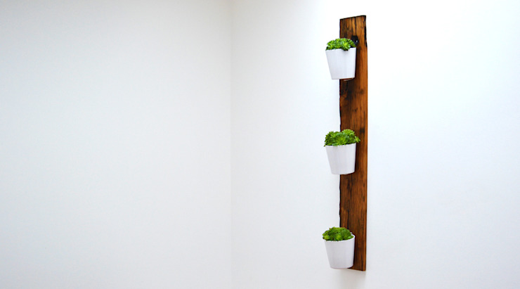 RECLAIMED FRENCH WAGON OAK VERTICAL PLANTER: modern  by Jam Furniture, Modern