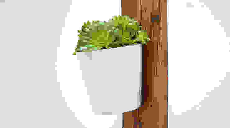 RECLAIMED FRENCH WAGON OAK VERTICAL PLANTER: minimalist  by Jam Furniture, Minimalist