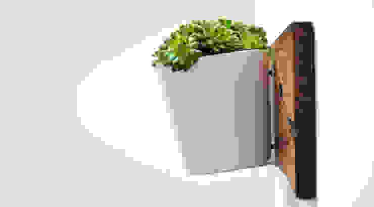 RECLAIMED FRENCH WAGON OAK HORIZONTAL PLANTER: modern  by Jam Furniture, Modern