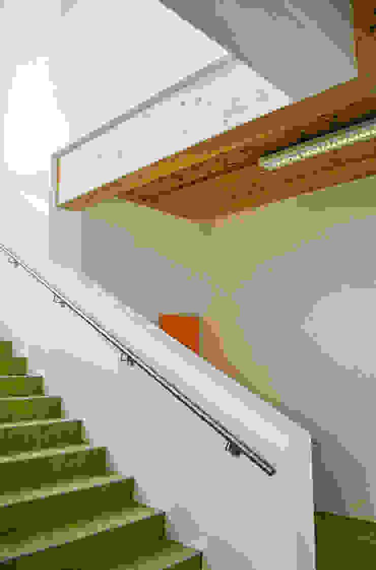 Interno: scala per il primo priano Scuole moderne di Studio FFwd-Architettura Moderno