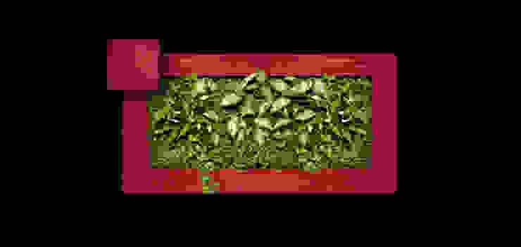 Фитокартина от Зеленый мир Классический