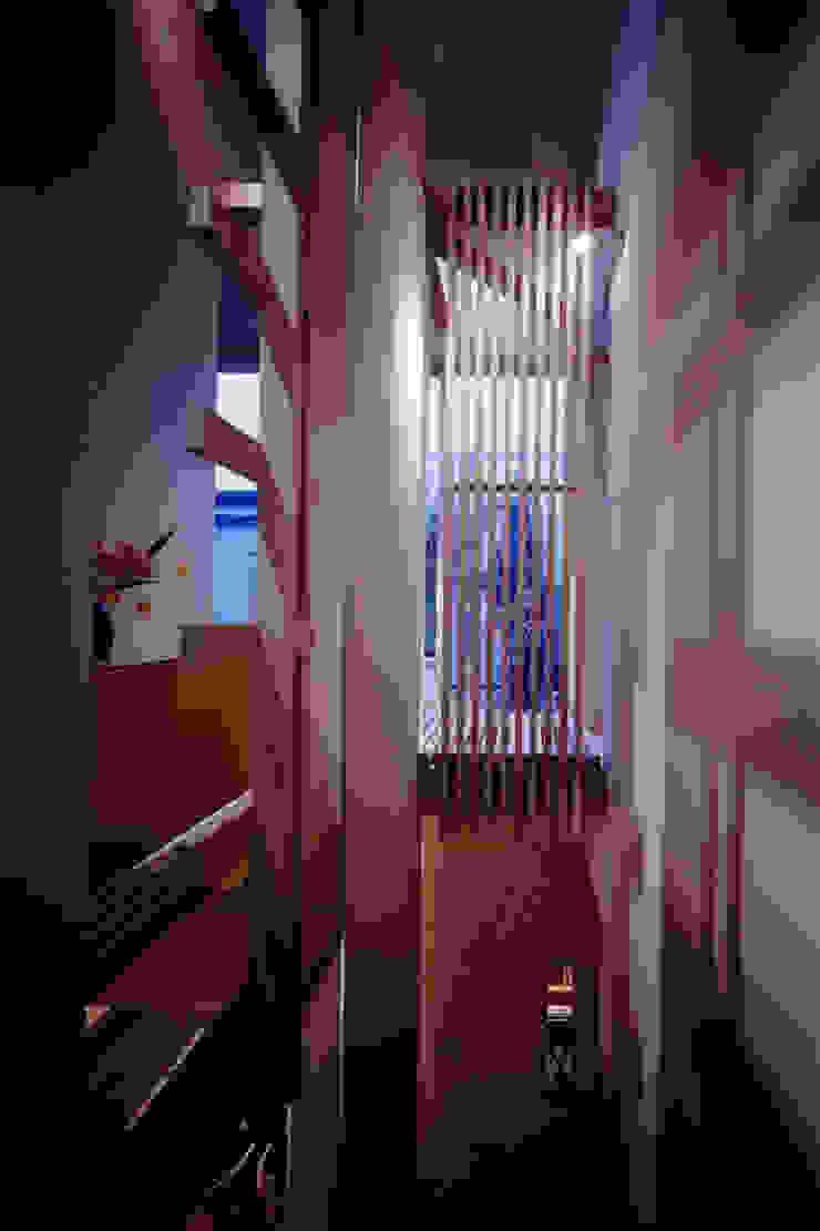 TAN 階段越しにテラスをみる オリジナルスタイルの 玄関&廊下&階段 の 濱嵜良実+株式会社 浜﨑工務店一級建築士事務所 オリジナル