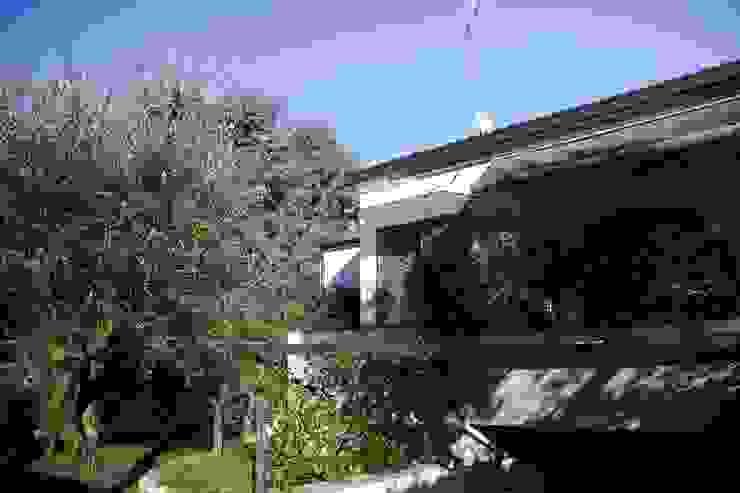 Vườn phong cách hiện đại bởi alessandro.spagliardi Hiện đại