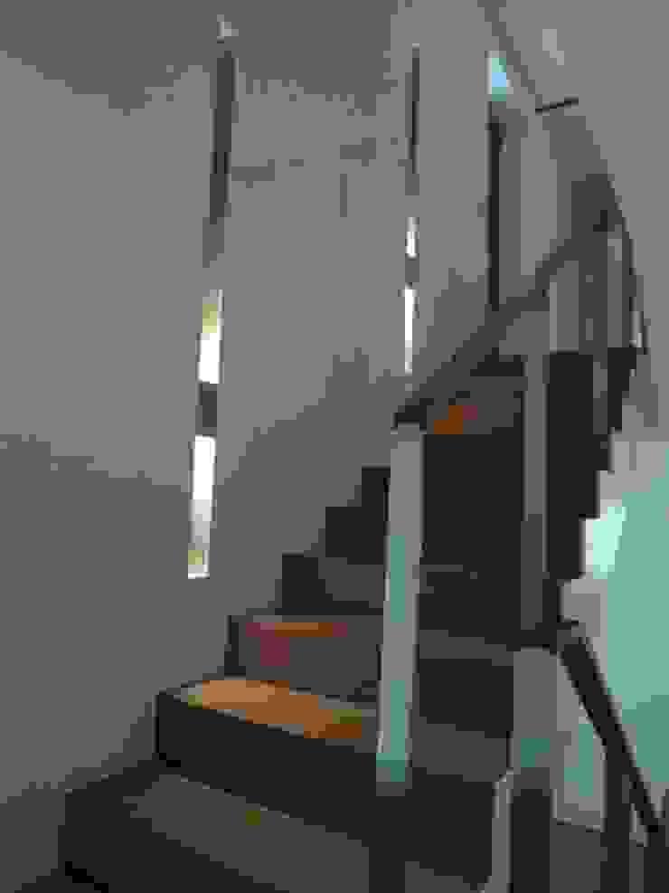 Villa Saarland Moderner Flur, Diele & Treppenhaus von Bolz Licht und Wohnen 1946 Modern