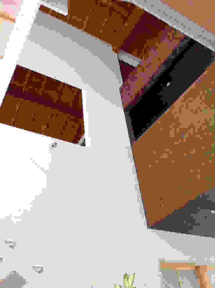 羽鳥の家 House in Hatori モダンデザインの リビング の 一級建築士事務所 本間義章建築設計事務所 モダン