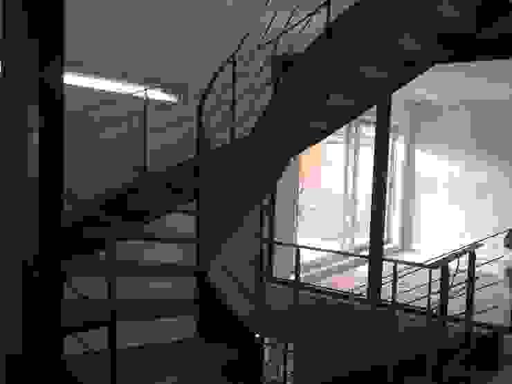 Maison ecolo Issy les Moulineaux Maisons modernes par BIO TEKNIK CONSULTING Moderne