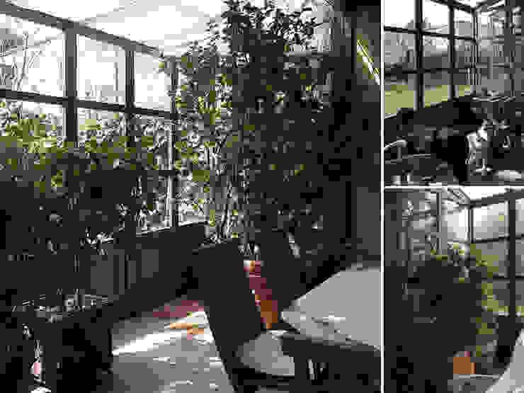 giardini d'inverno Giardino d'inverno in stile rurale di Studio Maggiore Architettura Rurale