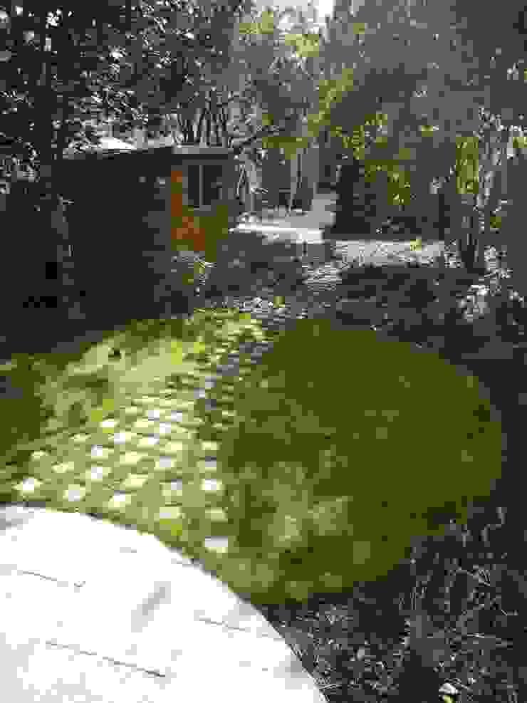 Long Suburban Garden Fenton Roberts Garden Design Jardin rustique