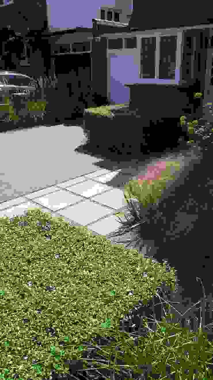 Resin bound gravel driveway Modern garden by Fenton Roberts Garden Design Modern