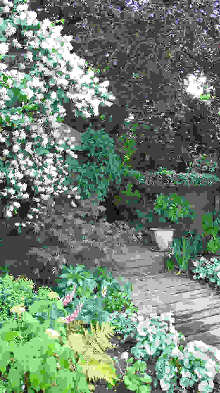 woodland planting Fenton Roberts Garden Design 庭院