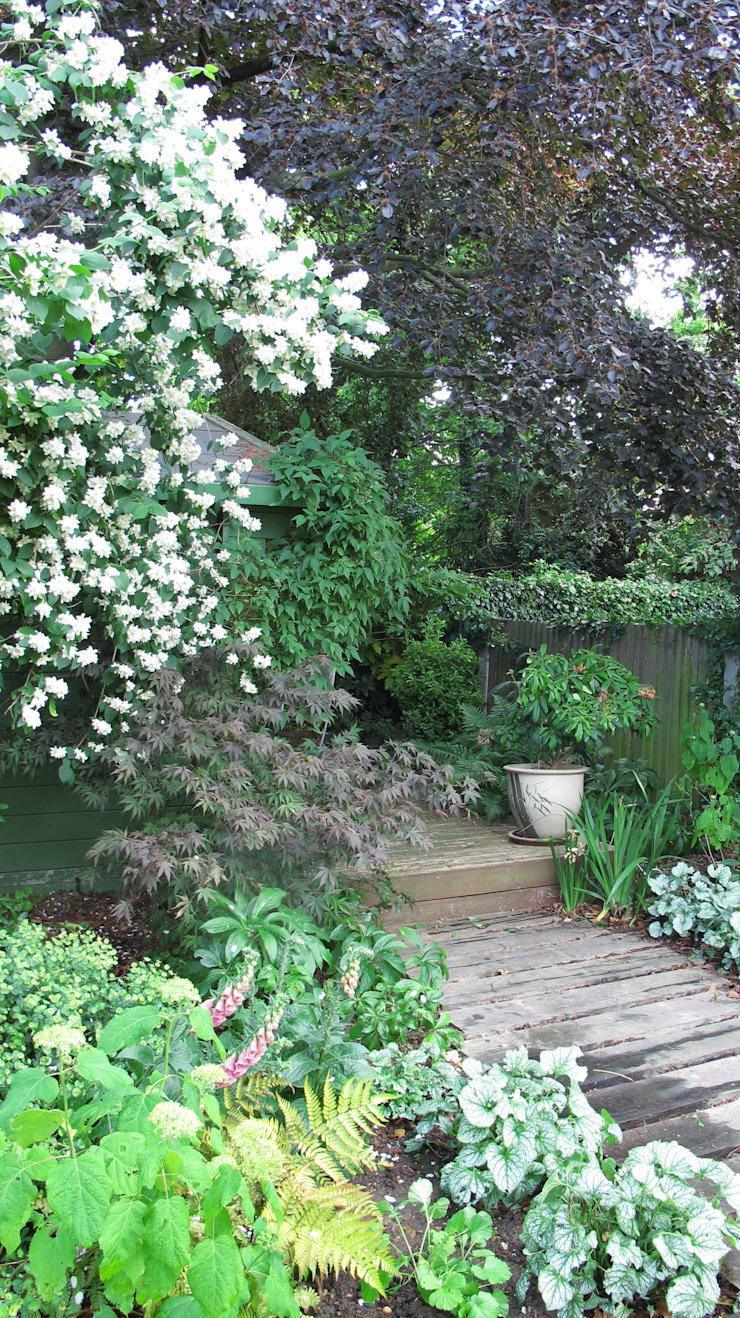 woodland planting Colonial style garden by Fenton Roberts Garden Design Colonial