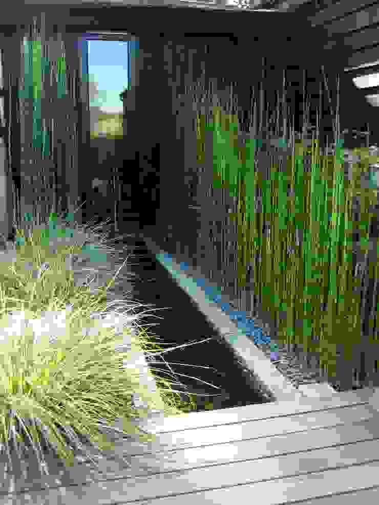 Rill planting Minimalist style garden by Rae Wilkinson Design Ltd Minimalist