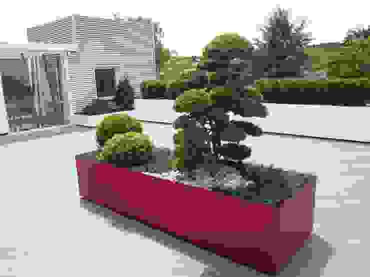 Terrazzo moderno: verde, bianco, rosso (foto 2) Balcone, Veranda & Terrazza in stile moderno di Midori srl Moderno