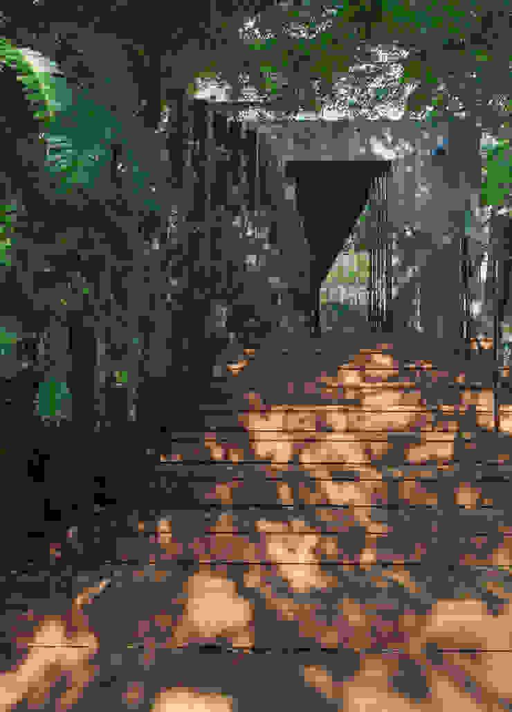 壁面緑化のアプローチ 日本家屋・アジアの家 の UZU 和風