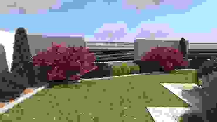nowoczesny ogród w Olsztynie ap. studio architektoniczne Aurelia Palczewska Nowoczesny ogród