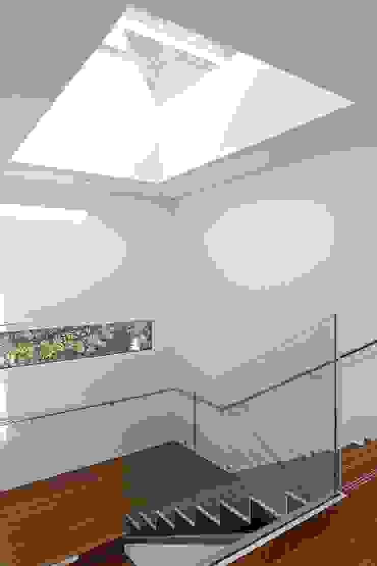 Stockgrove house Modern corridor, hallway & stairs by Nicolas Tye Architects Modern