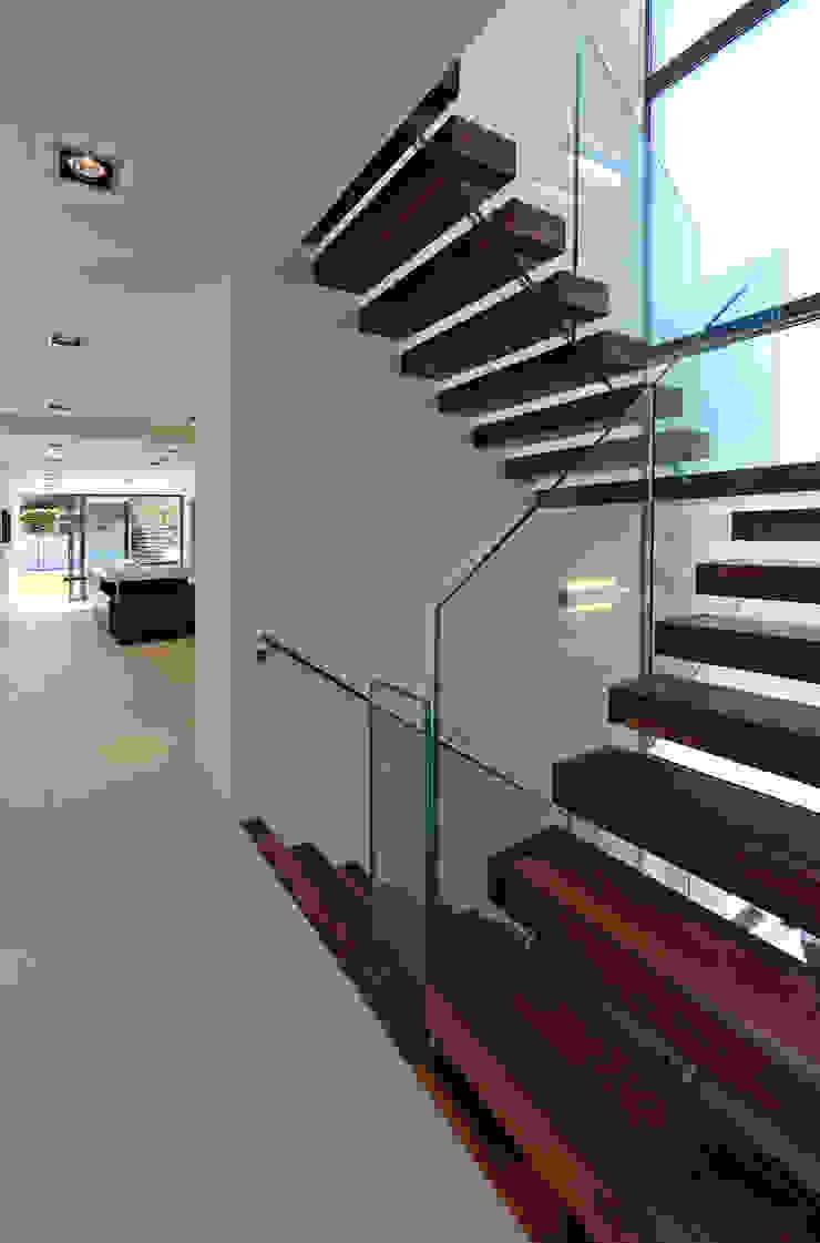 Greystones Modern corridor, hallway & stairs by Nicolas Tye Architects Modern