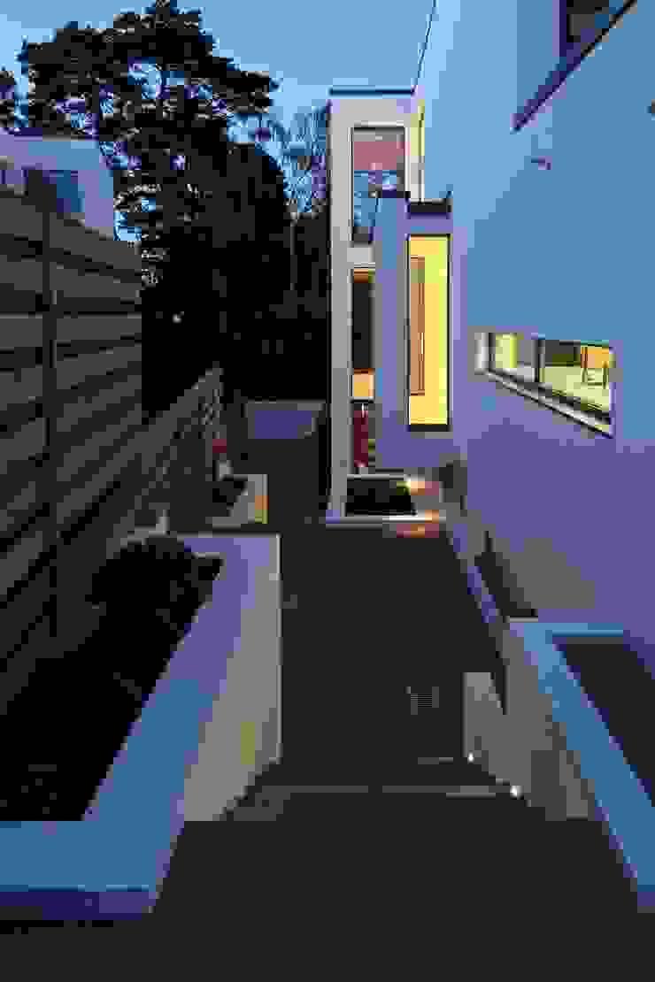 Greystones Modern windows & doors by Nicolas Tye Architects Modern