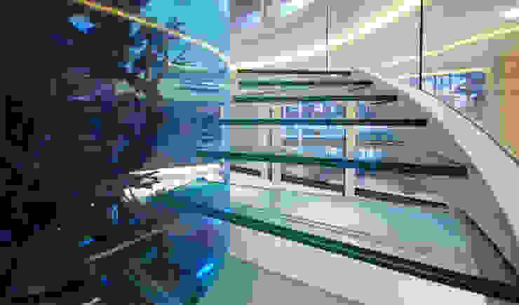 Helical glass staircase around giant fish tank Pasillos, vestíbulos y escaleras de estilo moderno de Diapo Moderno