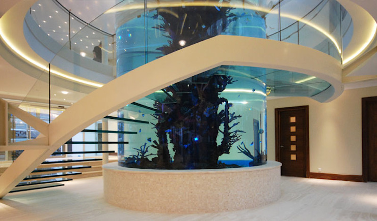 Helical glass staircase around giant fish tank Diapo Modern corridor, hallway & stairs