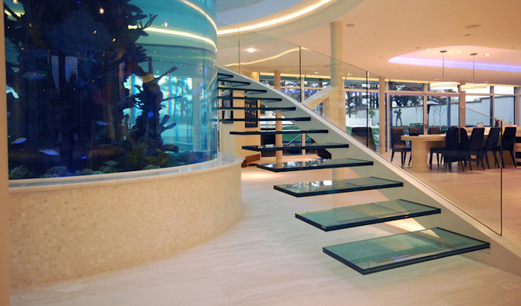 Helical glass staircase around giant fish tank Diapo Modern corridor, hallway & stairs