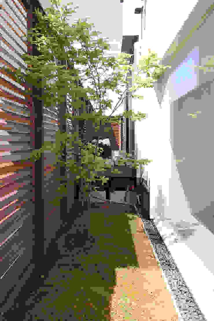 緑地 モダンな庭 の FCD モダン