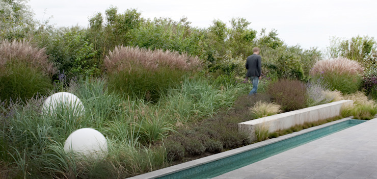 Natuurlijk overgang naar aangrenzend duinlandschap Moderne tuinen van Andrew van Egmond (ontwerp van tuin en landschap) Modern