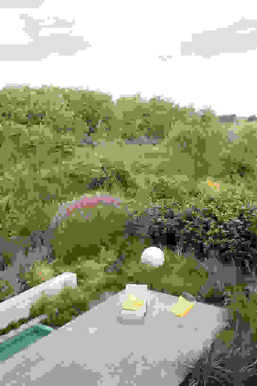 Door slimme erfgrens een natuurlijk overgang naar duinlandschap Moderne tuinen van Andrew van Egmond (ontwerp van tuin en landschap) Modern