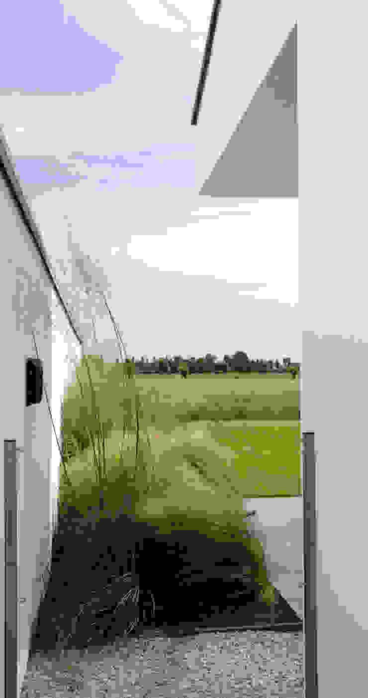 Polder garden in Delft, Holland Jardines minimalistas de Andrew van Egmond (ontwerp van tuin en landschap) Minimalista