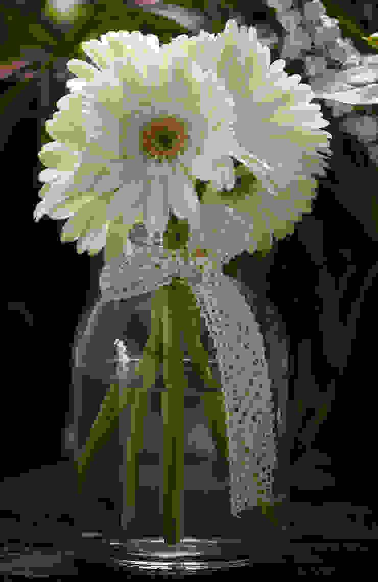 CRIS CAMBA Estudio floral. Interior landscaping
