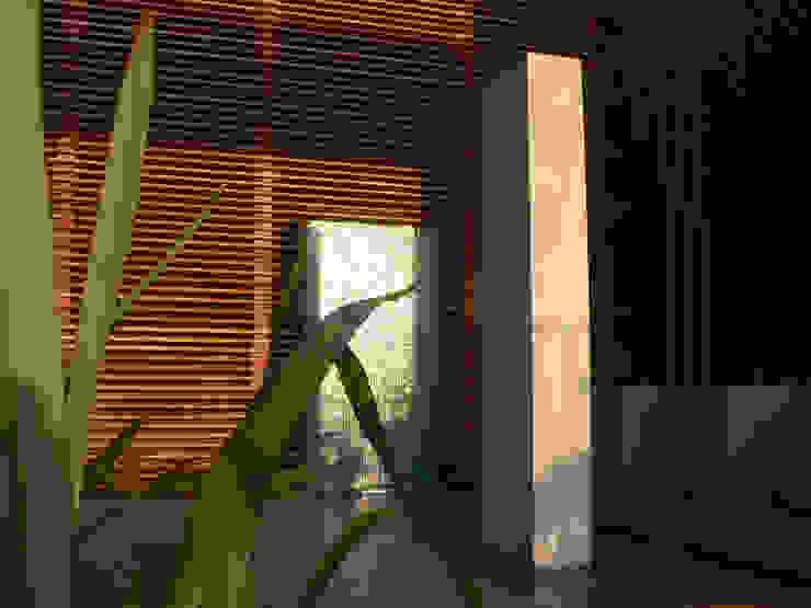 patio garden Holland Moderner Garten von Andrew van Egmond (ontwerp van tuin en landschap) Modern