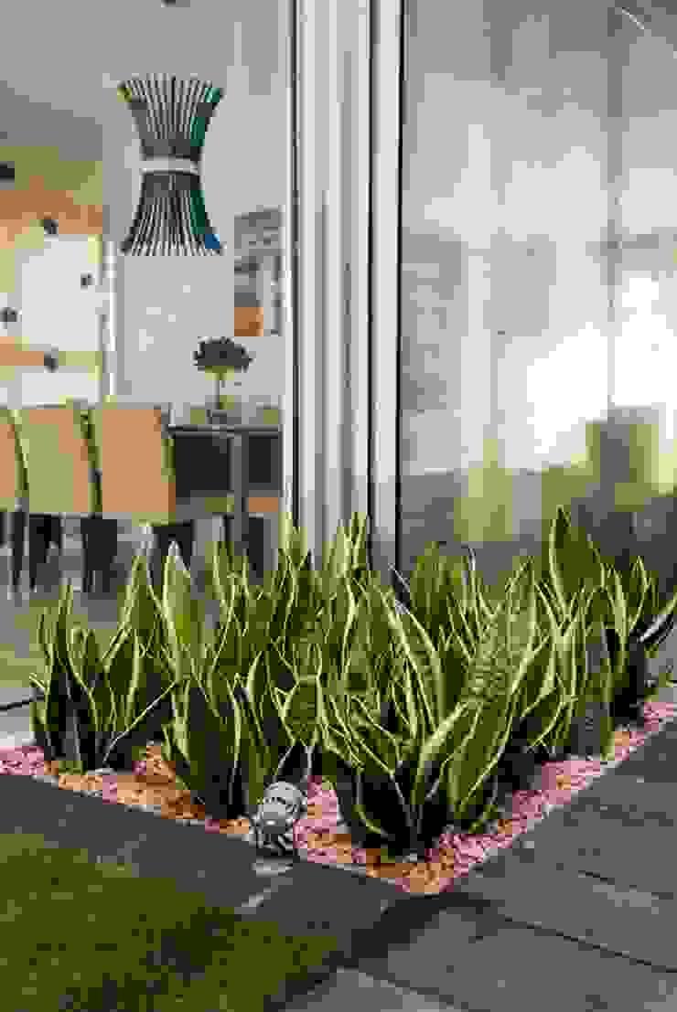 David Jiménez. Arquitectura y paisaje สวน